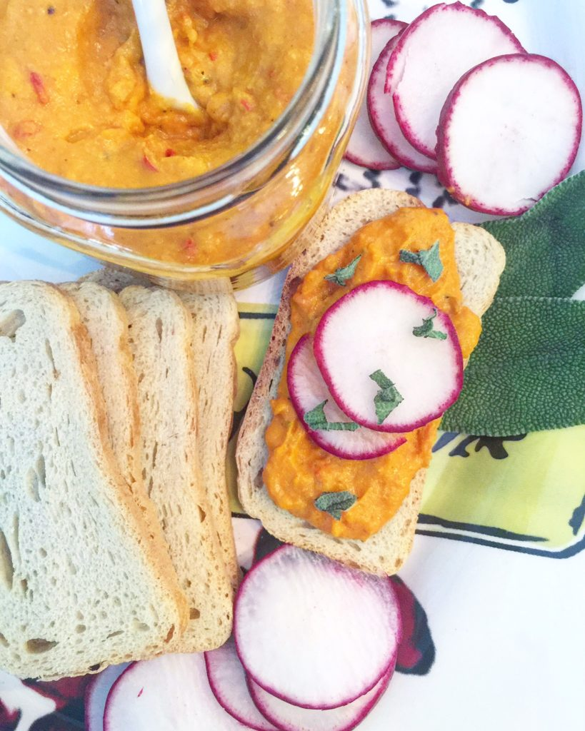 Spicy Acorn Squash Hummus
